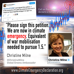 prominent_quote07ChristineMilne300